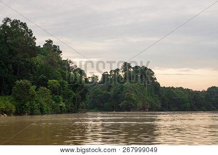 Early Morning Rainforest Along The Kinabatangan River, Sabah, Borneo. Malaysia.