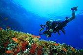 Coral reef, tropical fish and scuba diver with a big camera poster
