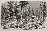 Old illustration of caravan near Cisco, along Union Pacific Railroad, Nevada. Original, by Lancelot, was published on L'Illustration, Journal Universel, Paris, 1868 poster