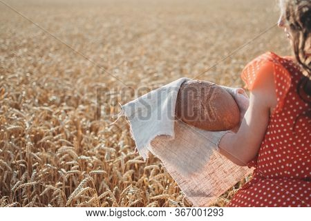 Grain Exports, Wheat Harvest And Export Limits, Global Food Security. Wheat Seeding. Farmers During