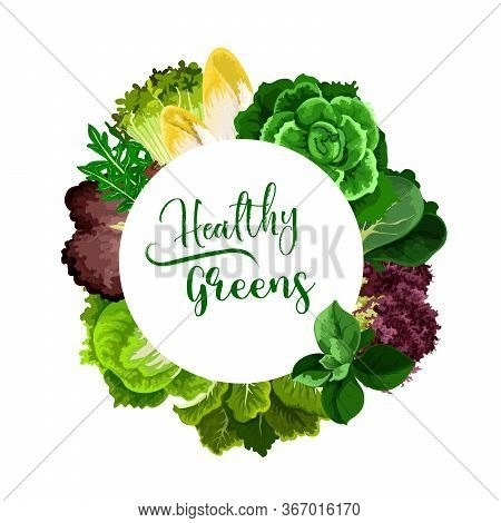 Salads And Veggies Round Vector Frame. Cress Salad, Belgian Endive And Chicory, Bok Choy Or Pak Choy