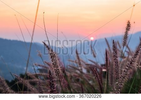 Wild With Mountains Scenery Sunset View As A Background
