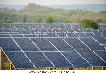 Photovoltaic Cell In The Solar Panel Farm