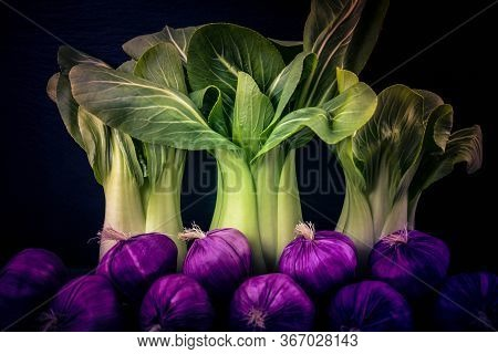 The Green Chinese Cabbage Pak Choi Brassica Rapa