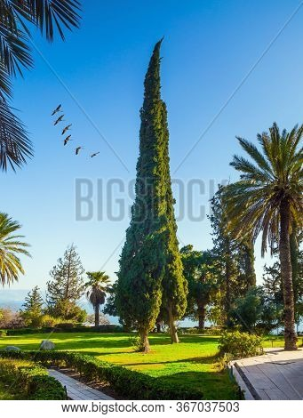The Mount Bliss on the Sea of Galilee. Blooming huge park around the monastery. Israel. Catholic Church of the Beatitudes of the Franciscan monastery. The concept of religious pilgrimage