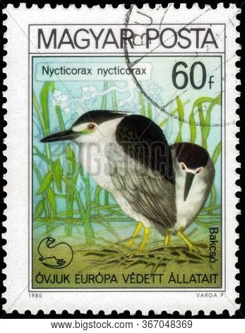 Saint Petersburg, Russia - May 17, 2020: Postage Stamp Issued In The Hungary With The Image Of The B
