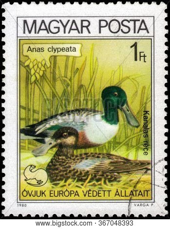Saint Petersburg, Russia - May 17, 2020: Postage Stamp Issued In The Hungary With The Image Of The N