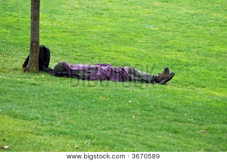 Homeless Man Sleeping in the rain.