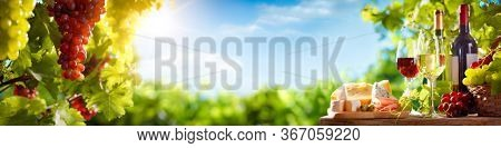 Wine and Cheese Platter with Grapes  in Vineyard