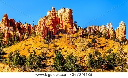Vermilion Colored Pinnacles And Hoodoos Around The Mossy Cave Hiking Trail In Bryce Canyon National