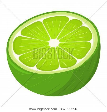 Fresh Bright Exotic Half Lime Fruit Isolated On White Background. Summer Fruits For Healthy Lifestyl