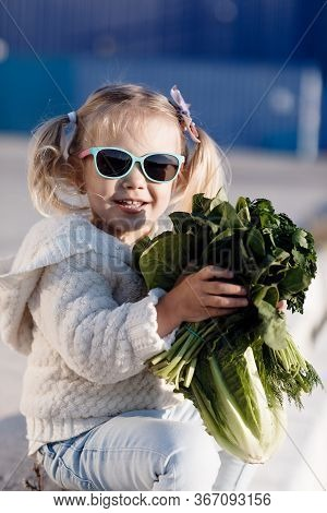 A Little Girl Of Three Years Old In A Grocery Store Or Supermarket Chooses Fresh Organic Cabbage. He