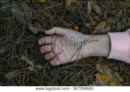 Murder In The Woods.the Hand Of A Dead Teenager In The Forest On The Ground. Victim Of Violence. The