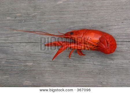 Single Boiled Crawfish