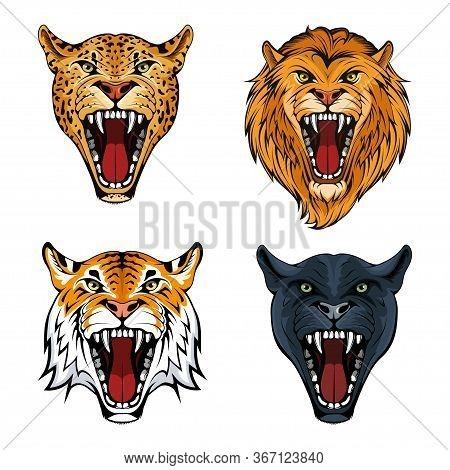 Predatory Animals Set. Leopard. Lion. Tiger. Panther. Wild Animals Collection. Beast Set. Angry Anim