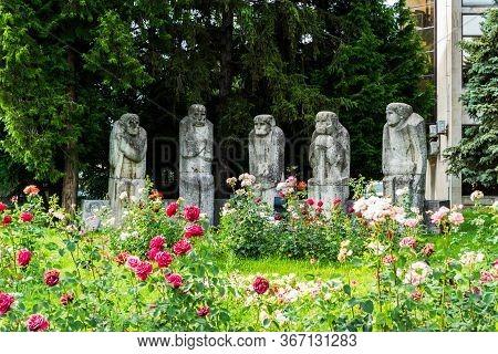 Baia Mare, Romania - June 17, 2019: The Baia Mare Old People's Monument.