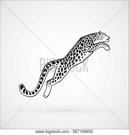 Leaping Snow Leopard Sign Logo Vector Illustration On White Background