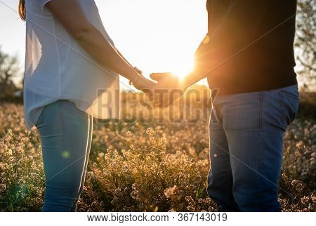 Young Pregnant Couple Holding Hands Into White Flowers Field With The Sunset And Sun Rays In The Bac