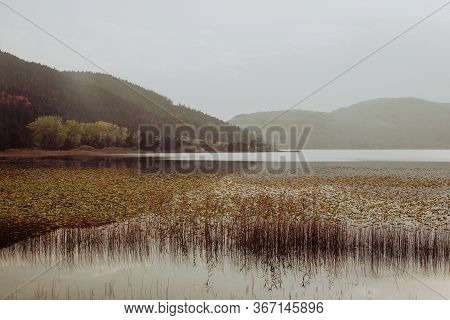 Beautiful Landscape In Autumn With Mountain,  Trees And Reeds Reflecting On A Calm Lake Like A Mirro