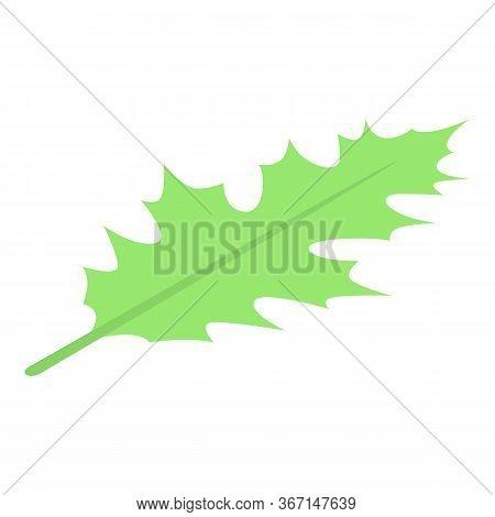 Leaf Oak Icon. Isometric Of Leaf Oak Vector Icon For Web Design Isolated On White Background