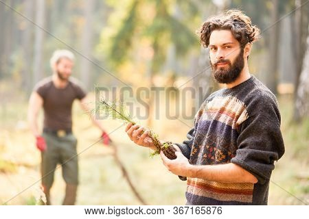 Forestry or forest worker at the pine tree plant for nature conservation