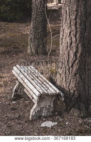 A White Wooden Old Bench Stands Crookedly Next To A Thick Tree. Abandoned Bench By The Tree. On The