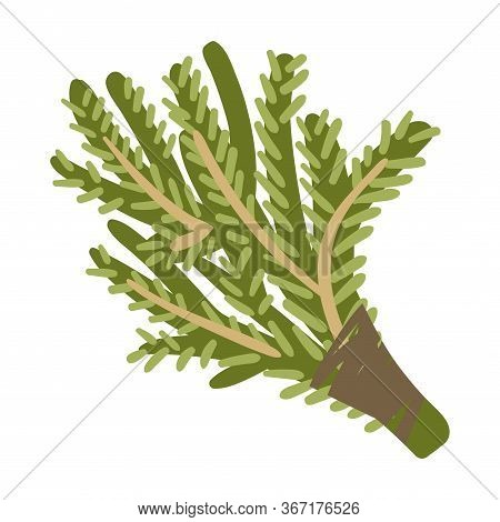 Deciduous Broom For Steaming In A Bath. Vector Illustration