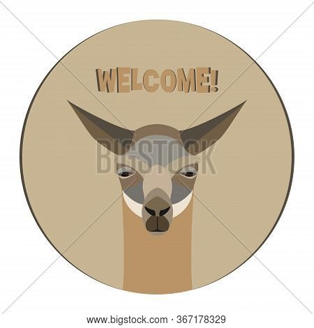 Lama Logo Template. Invitation Card, Advertising. Stylized Animal Character Of South America. Lama,