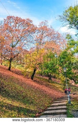 Autumn Trees Along The Stairs In The Park Leading To The Buda Castle In Budapest, Hungary. Autumn Tr