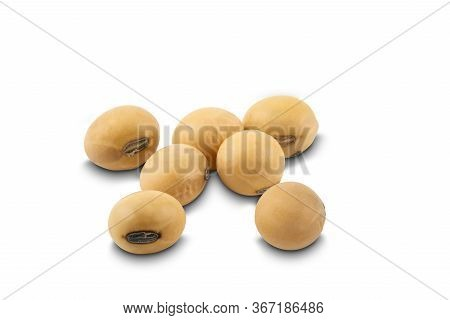 Soy Beans On White Background With Clipping Path. Soybean Is A Kind Of Legume Native To East Asia.