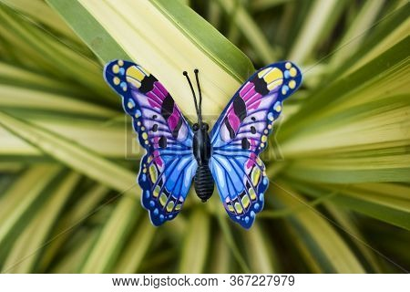 Cute Blue And Yellow Diy Butterfly, Artificial Fake Plastic Butterfly On Real Spider Ivy Plant, Lawn