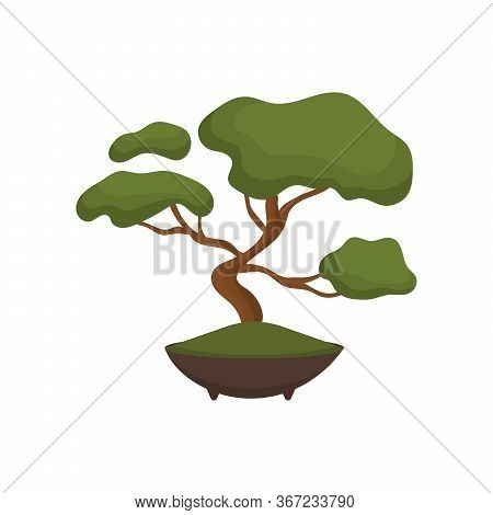 Bonsai Tree Color Flat Icon For Web And Mobile Design