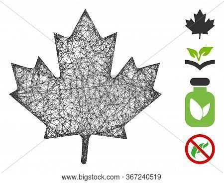Mesh Maple Leaf Web Icon Vector Illustration. Carcass Model Is Based On Maple Leaf Flat Icon. Mesh F