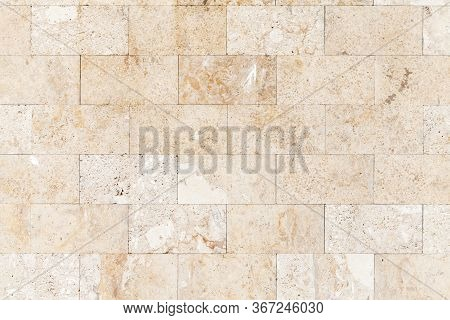 Stone Wall Made Of Shelly Limestone, It Is A Highly Fossiliferous Limestone, Composed Of A Number Of