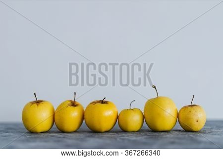 Plant-based Ingredients, Group Of Golden Delicious Apples  Lined Up On Grey Concrete Background