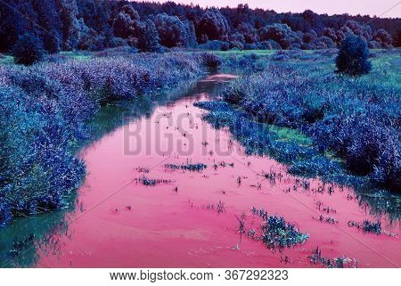A Bright Blue-purple Forest Background With A Pink River. Blue Gradient Color Filter. Fabulous Magic