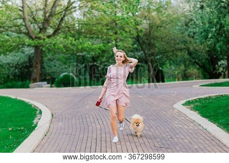 Portrait Of A Young Glamorous Female Wearing Pink Dress Holding Her Cute Pomeranian Spitz On Hands.
