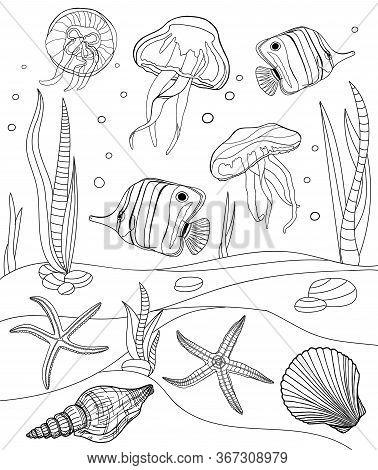 Coloring Pages. Tropical Fish, Seashell, Jellyfish And Starfish Vector Illustration. Outline Underwa