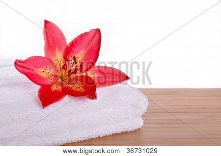 Spa Flower