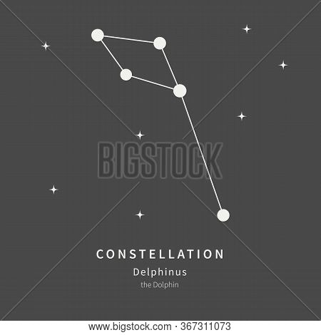 The Constellation Of Delphinus. The Dolphin - Linear Icon. Vector Illustration Of The Concept Of Ast