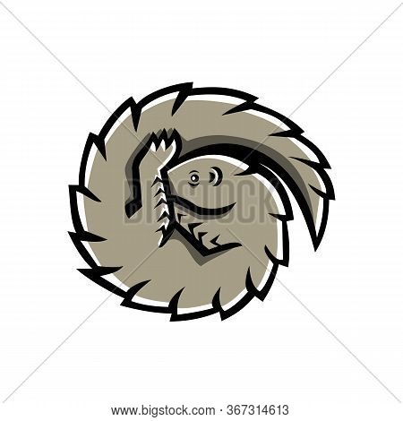 Mascot Icon Illustration Of A Pangolin Also Known As Scaly Anteater, A Mammal Covered In Hard Protec