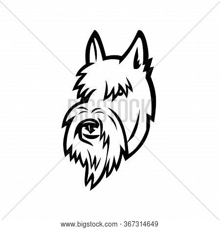 Sports Mascot Icon Illustration Of Head Of A Scottish Terrier, Aberdeen Terrier Or Scottie Dog Viewe