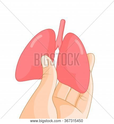 Hand Holding Human Organ, Lung. Human Body Part, Internal Organs. Health Protection Concept. Vector