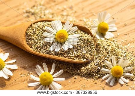 Chamomile Flowers And Chamomile Tea. Herbal Chamomile Tea. Close-up. Seasonal Treatment, Alternative