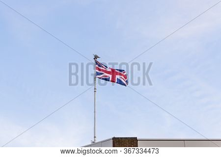 Flag Of The United Kingdom With A Seagull Landed On The Pole. Flag Of England Embroidered On Blue Sk