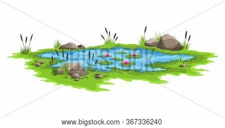 Blue Water Pond With Reeds And Stones Around. Natural Pond Outdoor Scene. Concept Of Open Small Swam