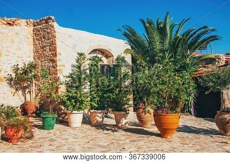 Plants And Flowers In Pots Outdoor The Old House. Greece. Crete.