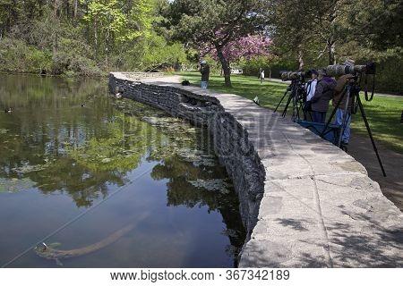 Toronto, Ontario / Canada - 05/21/2018: Bird Watching In The Park, Photographers In Full Gears, Spri