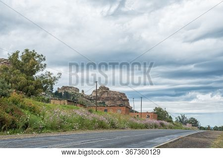 Ficksburg, South Africa - March 20, 2020: Cosmos Flowers And Farm Worker Houses Next To Road R26 Bet
