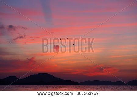 Crimea Landscape. Dawn At The Sea, Koktebel. Pink Dawn.